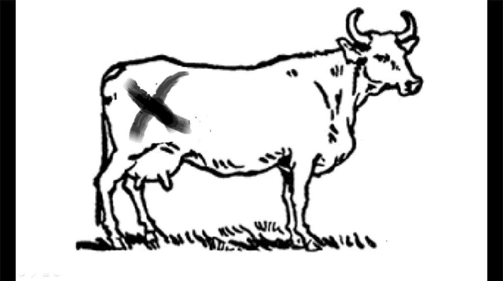 Click Clack Moo Free Coloring Pages