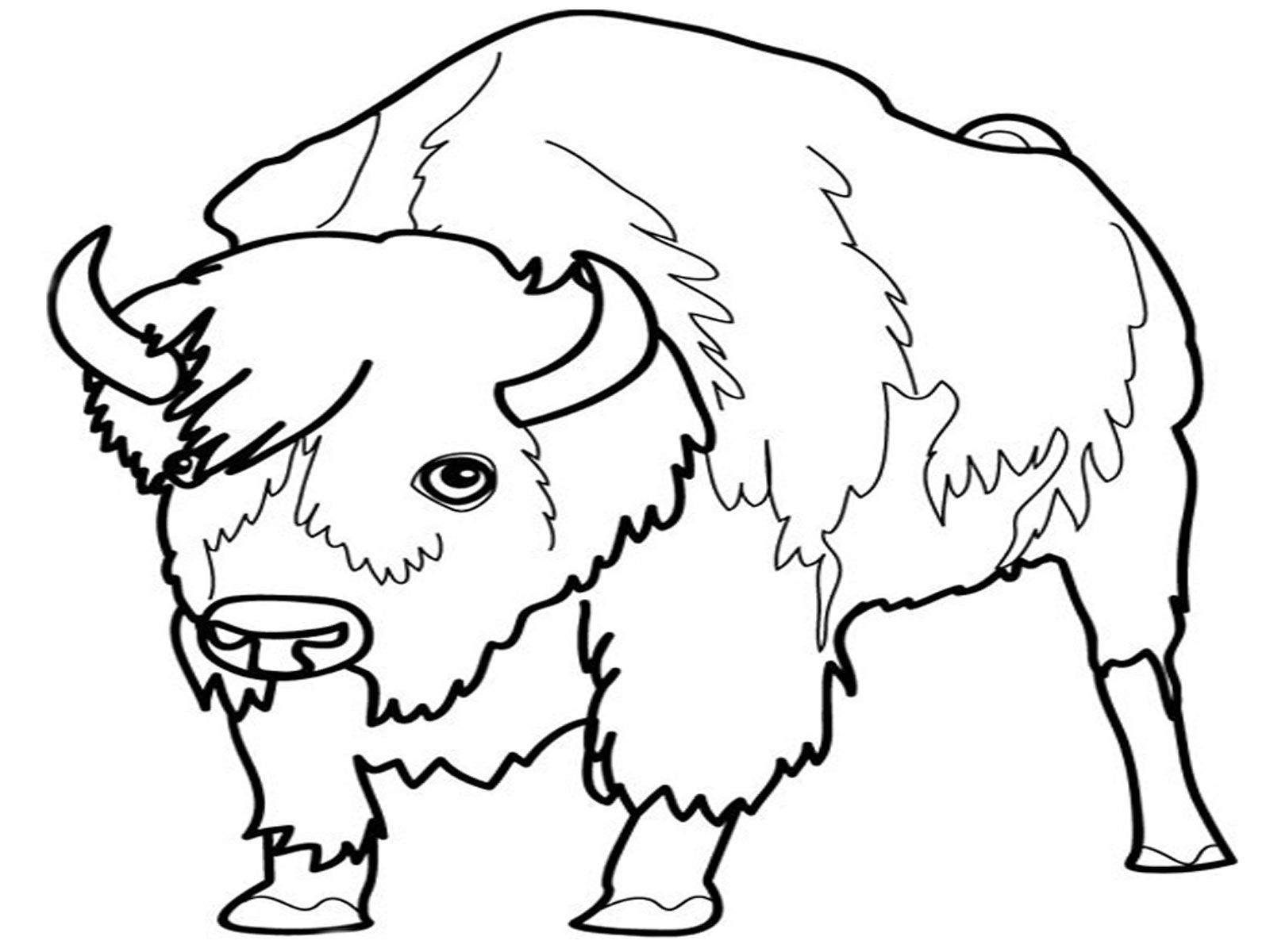Ausmalbilder Zootiere: Grassland Animals Coloring Pages