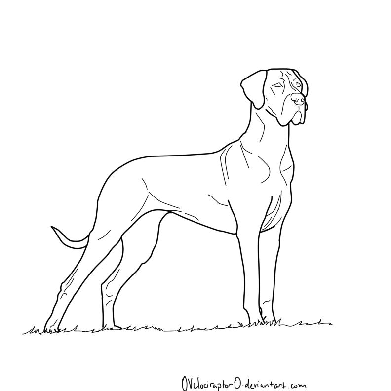 Coloring Book How Great : Great Dane Coloring Pages Coloring Home
