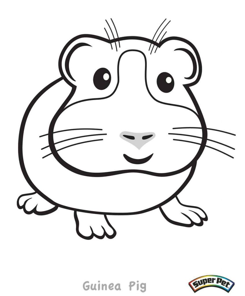 Guinea pig coloring pages coloring home for Coloring pages of a pig