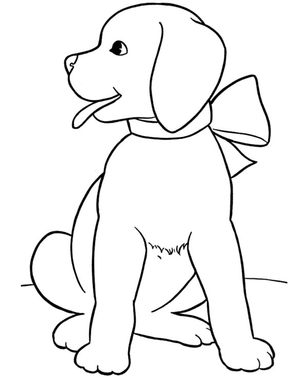 puppy and kitten coloring page coloring home coloring coloring pages