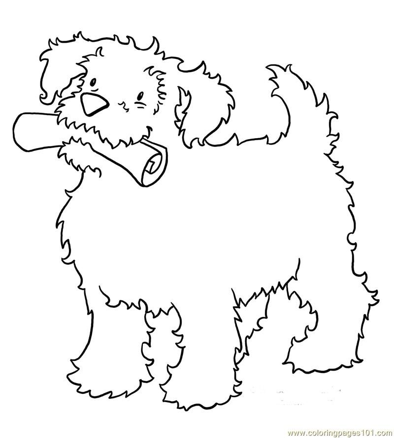 mammals coloring pages - photo#33
