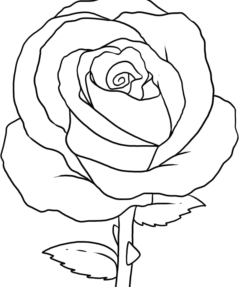 Coloring Pages Rose Az Coloring Pages Roses Coloring Pages