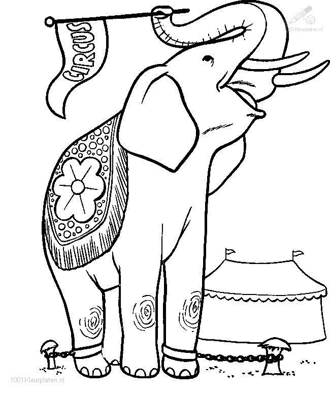 circus elephant coloring pages - photo#22