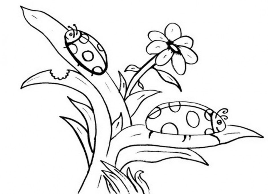 Cute Ladybug Coloring Pages Free For Kids 207450