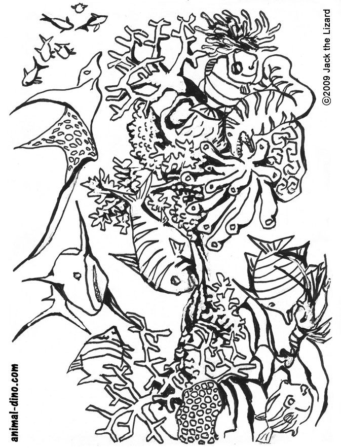 marine animals coloring pages | Free Printable Ocean Life Coloring Pages - Coloring Home
