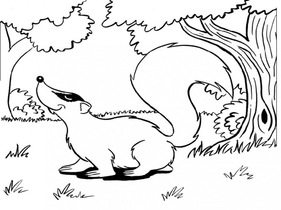 Animals Coloring Pages Printable Sea Id 81400 Uncategorized Yoand
