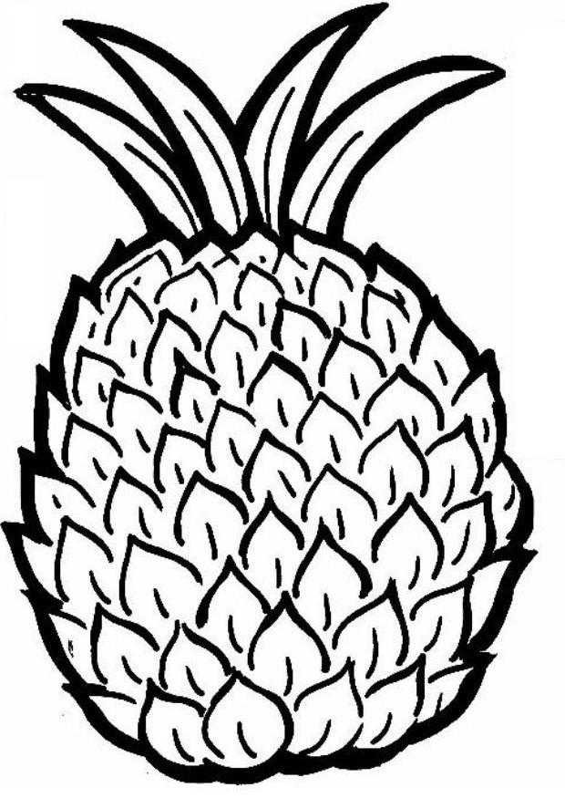 Food Color Pages together with Stock Illustration Line Drawing Durian Simple Line Vector Hand Drawn Sketch Isolated Black White Cartoon Illustration Coloring Book Drawn Image95206727 also Toadette Coloring Page likewise Clipart Jelly Jello Outline besides Drawn Globe World Outline. on fruit coloring pages