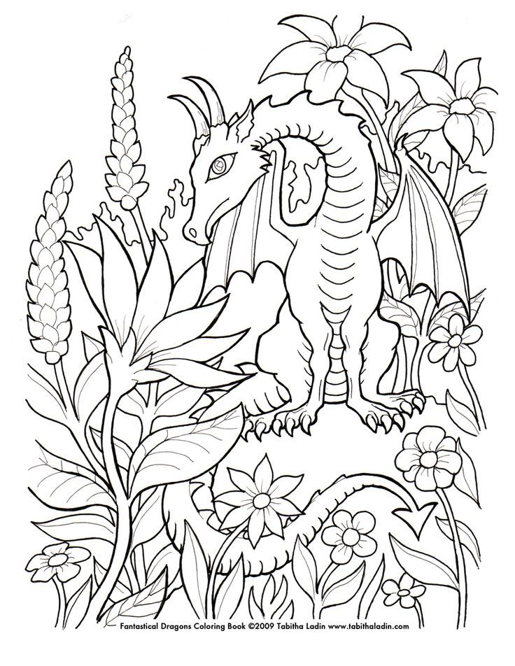 detailed dragon coloring pages - photo #16