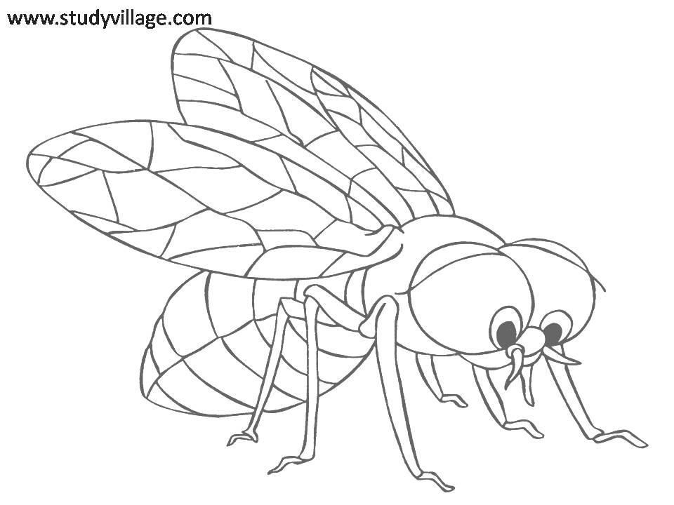Funny Coloring Pages For Kids Coloring Home