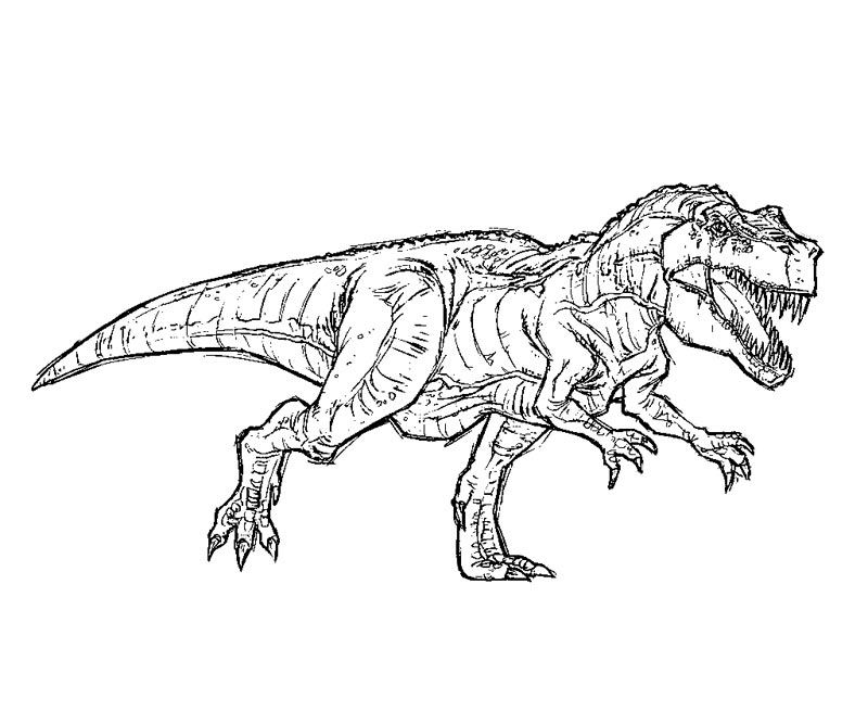 Jurassic Park Coloring Pages Images Pictures