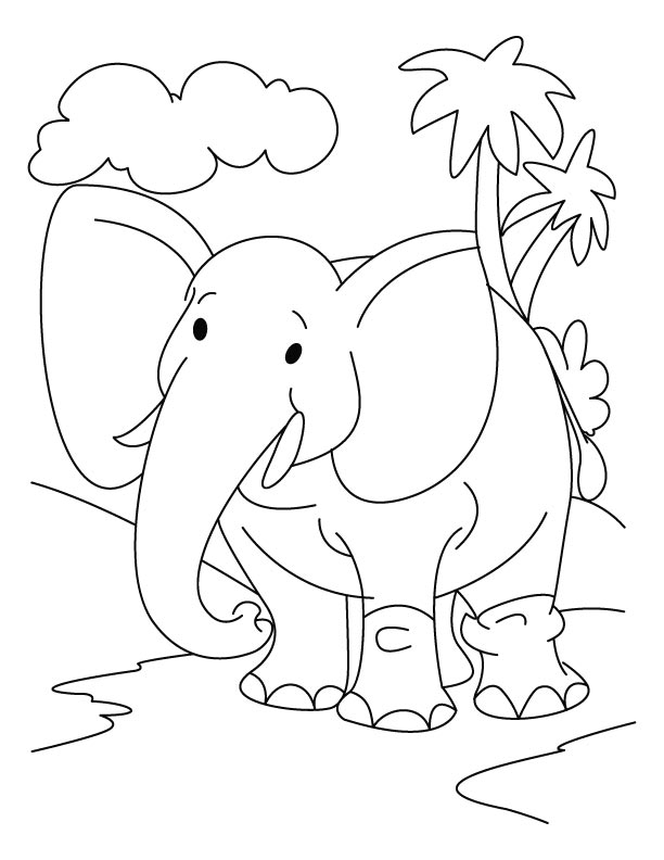 Coloring Pages For Animals In The Jungle : Jungle animal coloring pages az