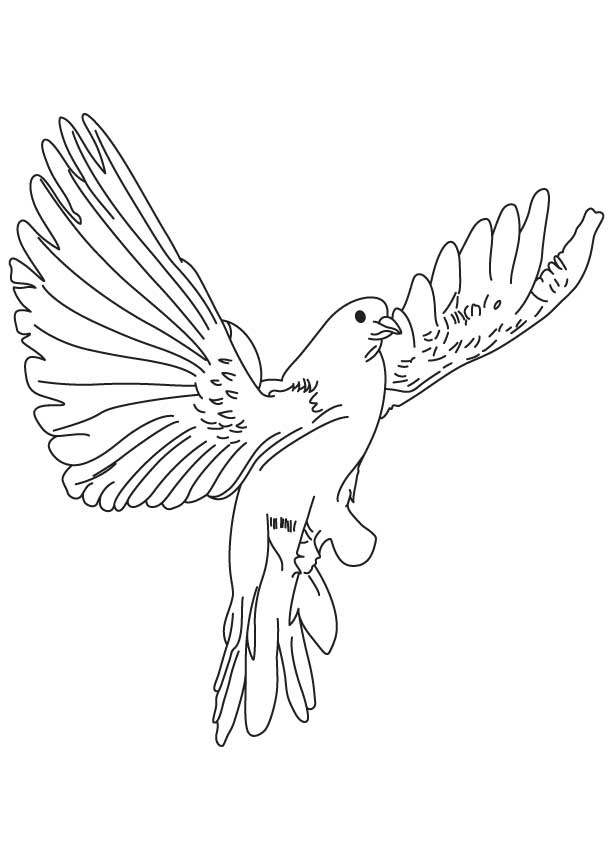 Finch Flying Drawing Bluebird coloring page - az coloring pages