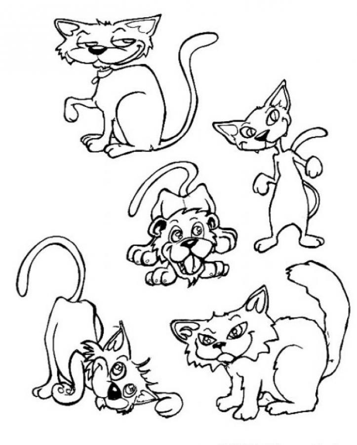 coloring pages cats and dogs - cat dog cartoon characters coloring home