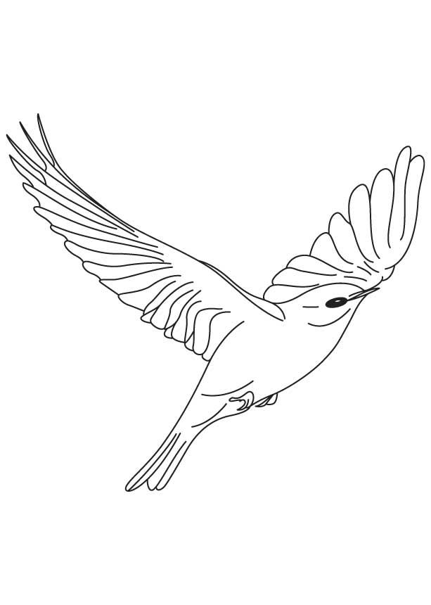 free flying bird coloring pages - photo#23