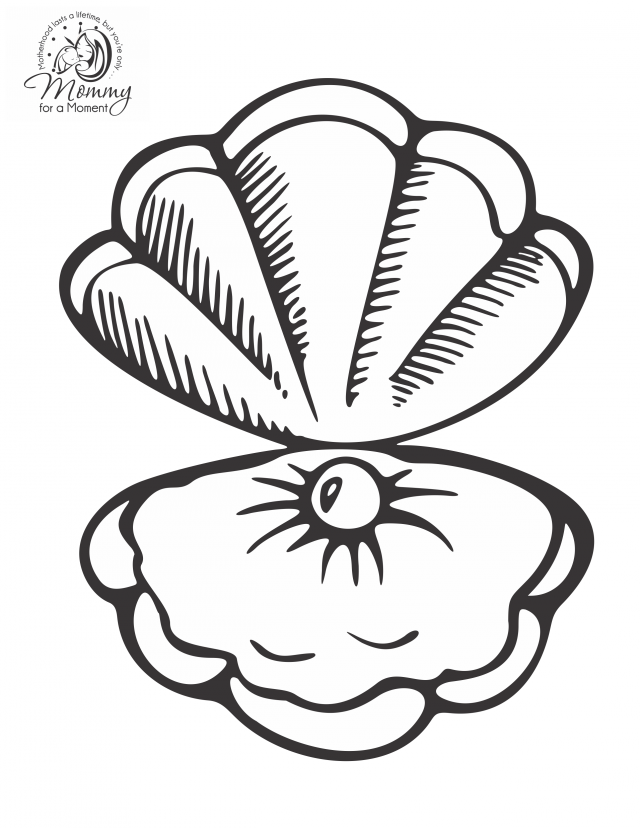 coloring pages of sea shell - photo#12