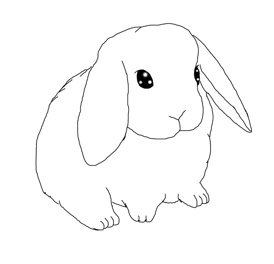 Line Drawing Bunny : Bunny rabbit drawing az coloring pages
