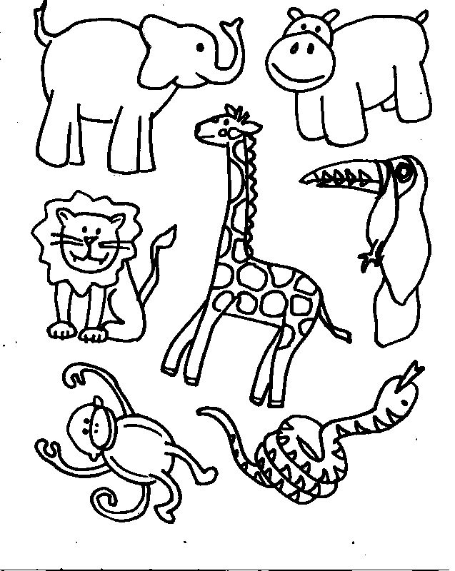 Jungle Animal Coloring Pages - AZ Coloring Pages