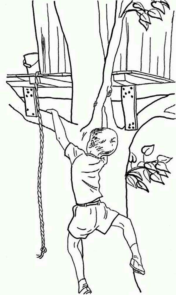 A Boy In Tree Coloring Pages