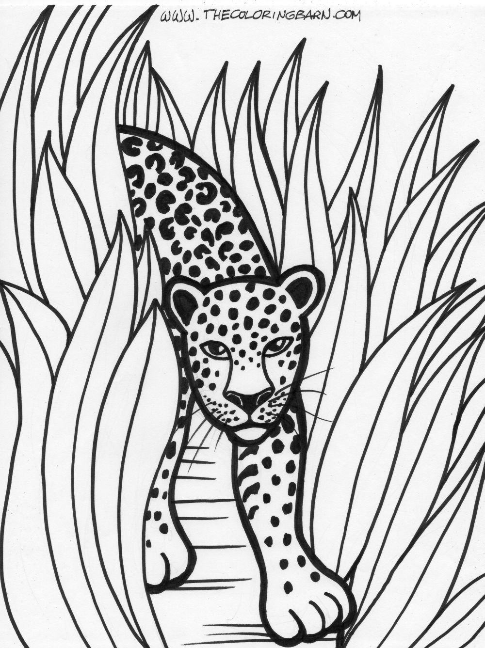 Rainforest Coloring Pages Printable Rainforest Trees Coloring ...
