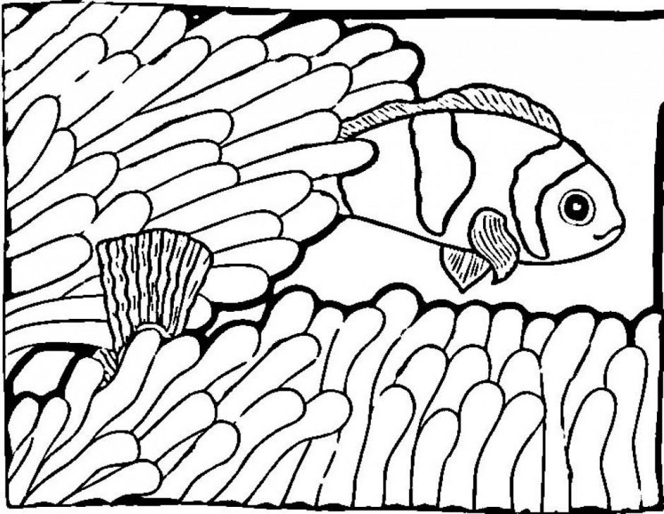 printable coloring pages of tropical fish | Cute Fish Coloring Pages - Coloring Home