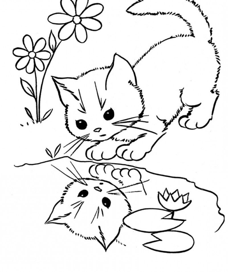 printable cat face coloring pages - photo#17