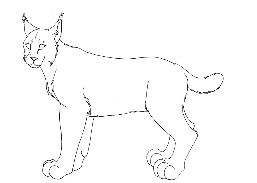 Canadian Lynx Pictures Az Coloring Pages