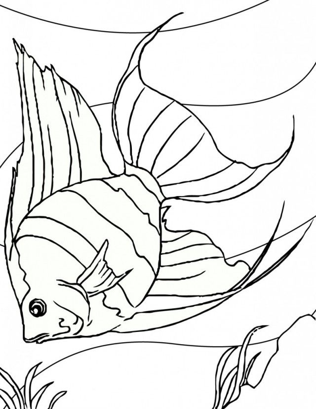 Coloring Pages Fish Bowl For Kids 108271