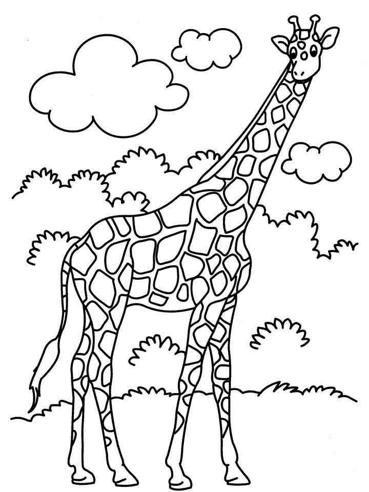jumbo coloring pages - photo#5
