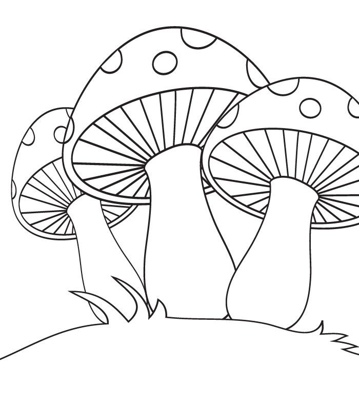 lemon coloring pages for kids - photo#25