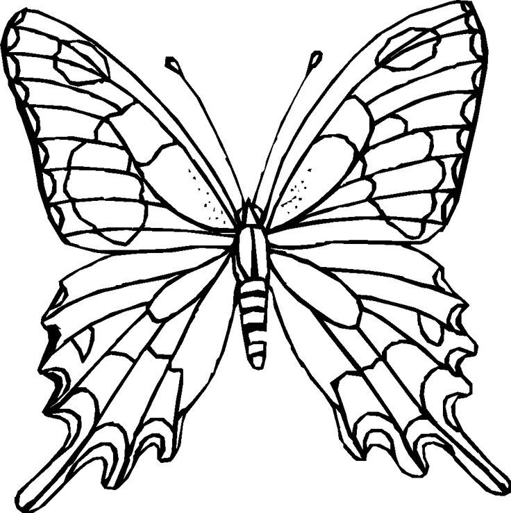 hard butterfly coloring pages - photo#5