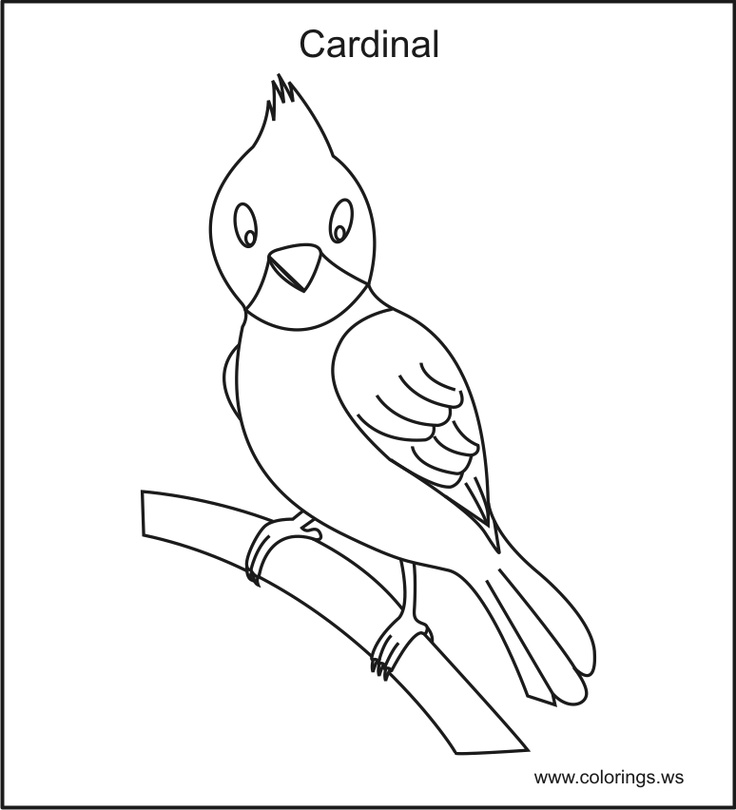 az cardinals coloring pages - photo #15