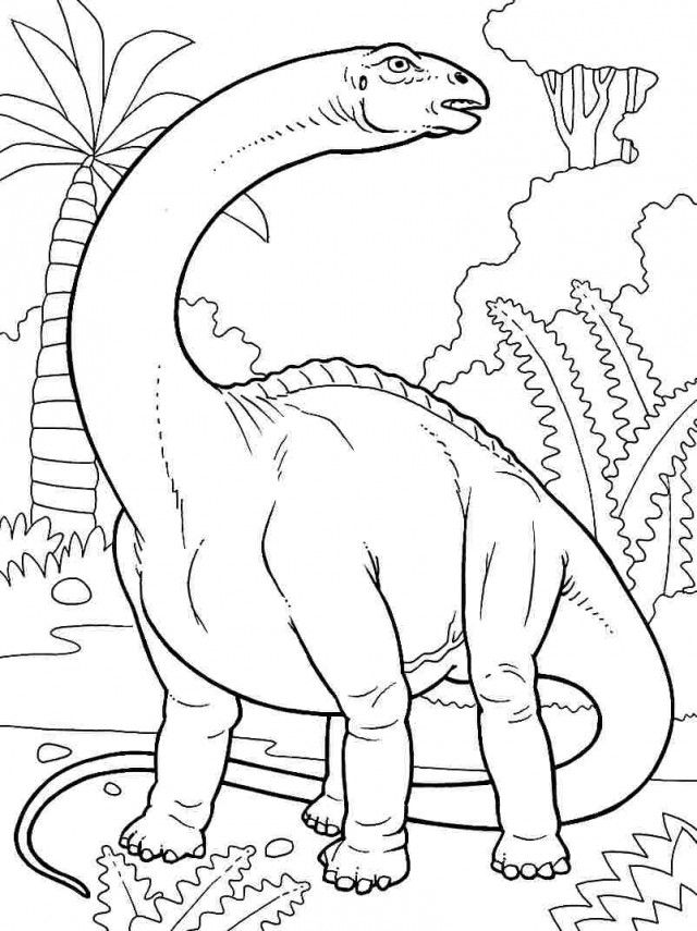 Brontosaurus Coloring Pages AZ