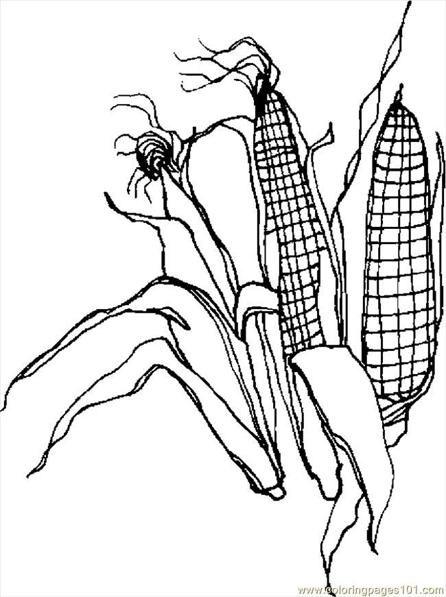 corn stalks coloring pages - photo#17