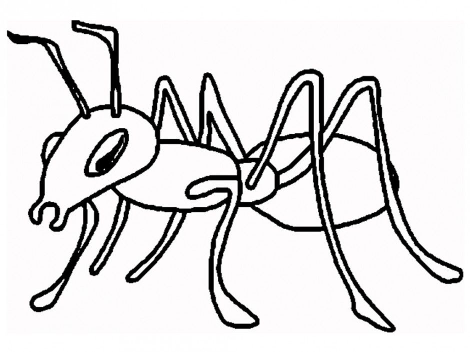 Coloring Pages Ants Coloring Home