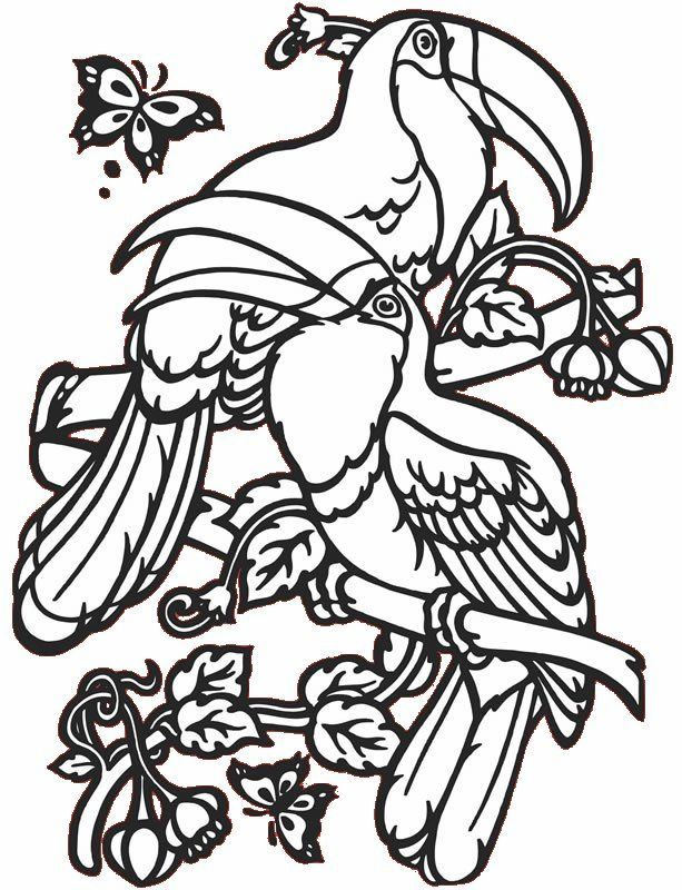 Tropical Birds Coloring Pages