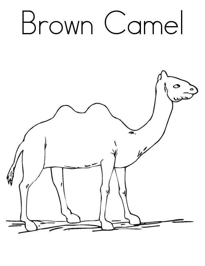 camel coloring pages for kids - photo#30