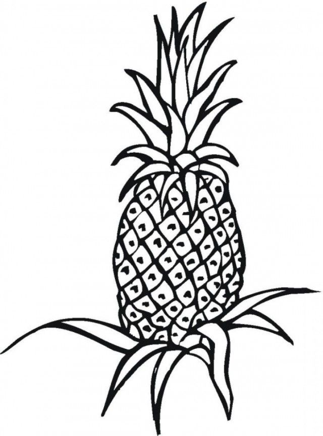 image regarding Pineapple Printable called Fruit Pineapple Printable Coloring Web pages Far more Coloring Web page