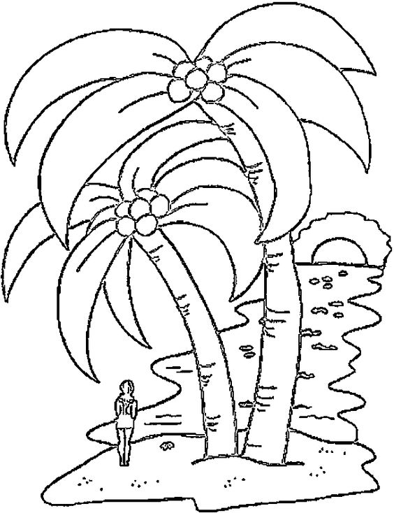 Coconut Tree Coloring Page Coloring