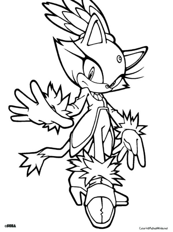 11 Pics of Sonic Style Coloring Pages - Sonic Blaze The Cat ...