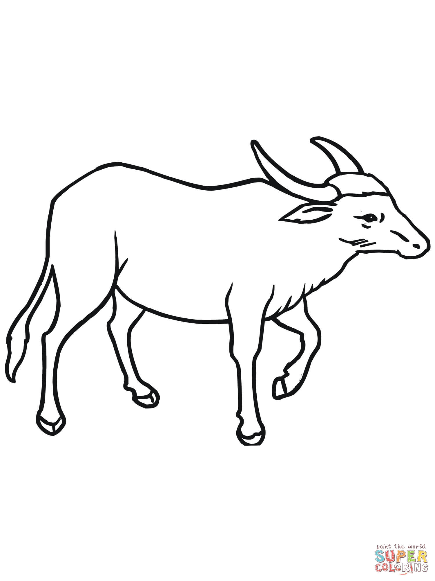 buffalo coloring pages - photo#18