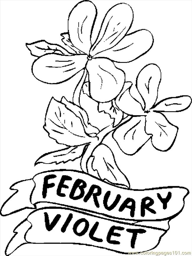 02 February Violet 1 Coloring Page - Free Flowers Coloring Pages :  ColoringPages101.com