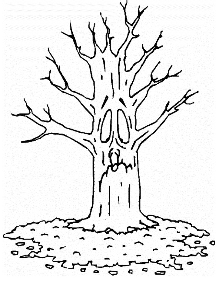Tree without leaves Colouring How To Draw A Cartoon Tree Without Leaves