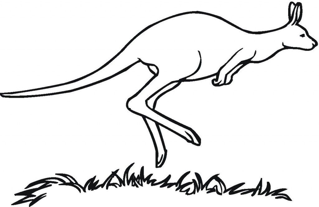 Free Printable Kangaroo Coloring Page For Kids | Coloring Pages