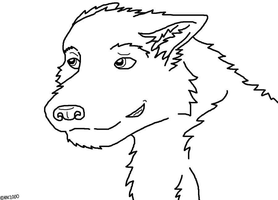 Wolf Face Outline - Coloring Home