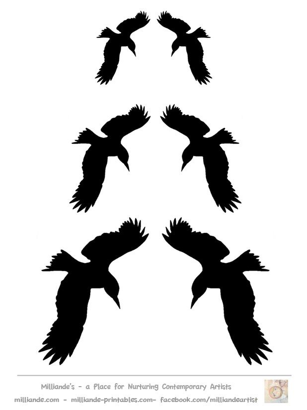 graphic relating to Bird Silhouette Printable called Printable Chook Silhouettes - Coloring House