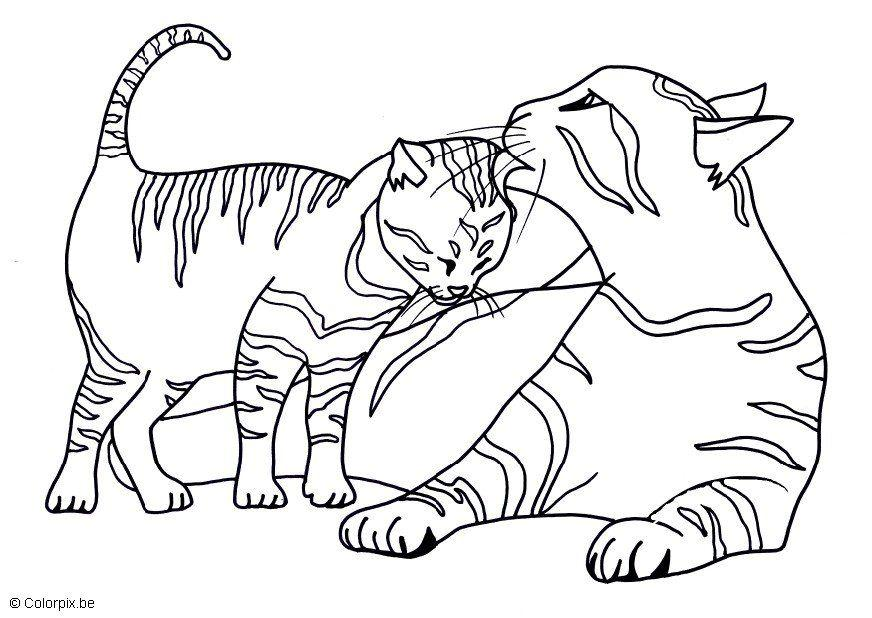 Coloring page kittens - img 11591.