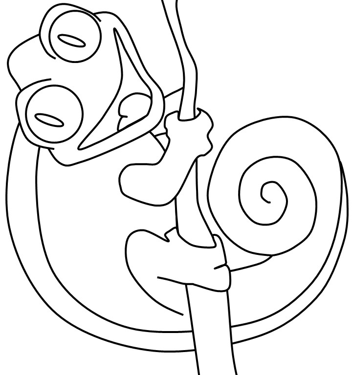 chameleon coloring pages - photo#21