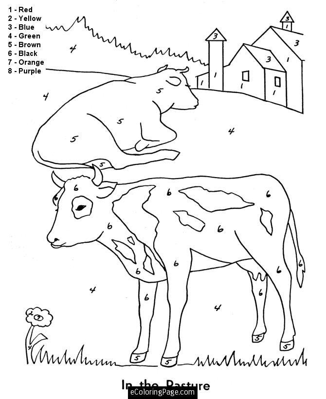 Farm Animal Color Pages