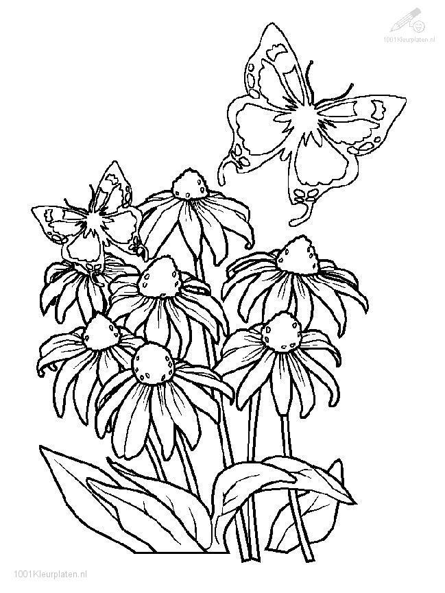 Snoopy Spring Pictures Az Coloring Pages